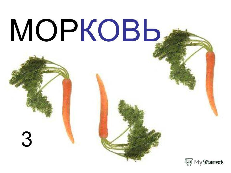 3 Carrots МОРКОВЬ 3 carrots морковь
