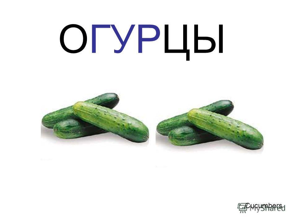 ОГУРЦЫ Cucumbers Огурцы cucumbers
