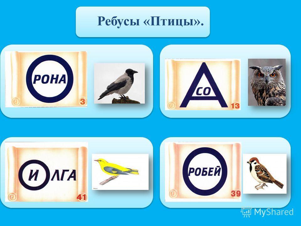 Ребусы «Птицы».