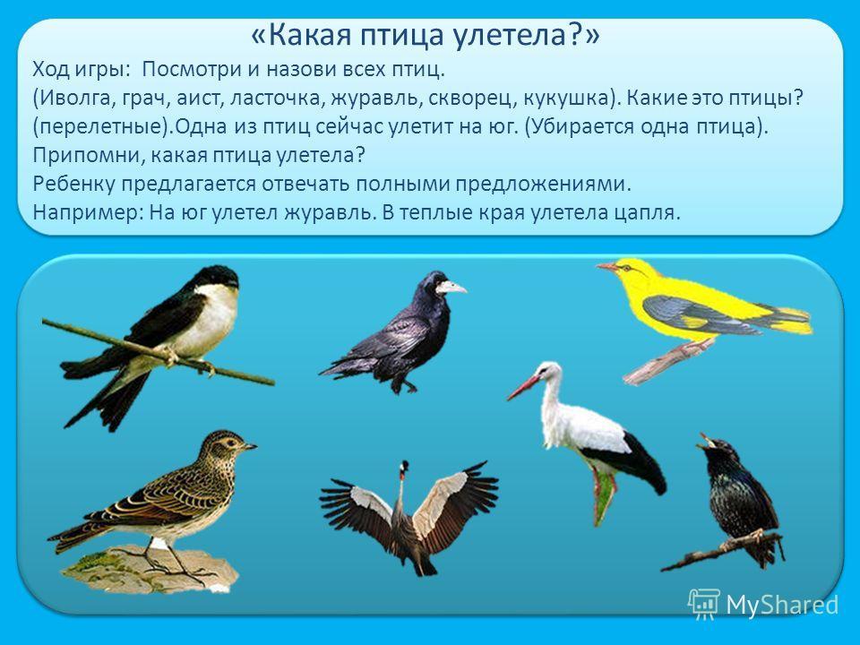 «Какая птица улетела?» Ход игры: Посмотри и назови всех птиц. (Иволга, грач, аист, ласточка, журавль, скворец, кукушка). Какие это птицы? (перелетные).Одна из птиц сейчас улетит на юг. (Убирается одна птица). Припомни, какая птица улетела? Ребенку пр