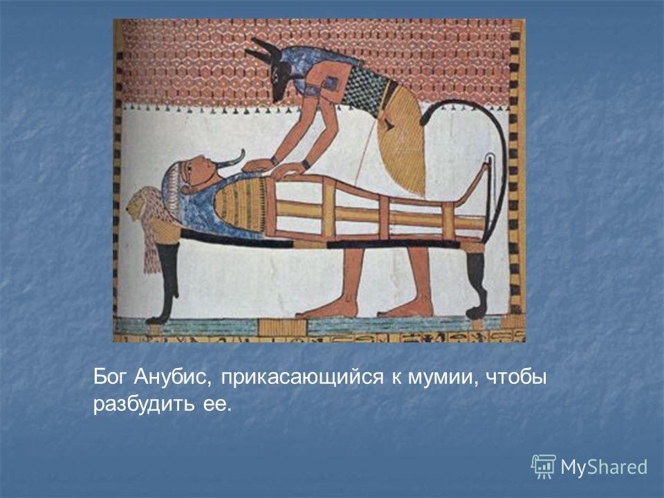 Солнечная ладья, на которой изображены боги и умерший, стоящий за рулевым веслом