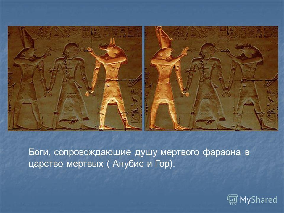 Египетские верования. Египтяне поклонялись некоторым животным. Они считали священными крокодилов, некоторых птиц, например, сокола, грифа, ибиса, а также кошек, шакалов, некоторых насекомых, например. Навозного жука скарабея. В храмах, посвященных бо