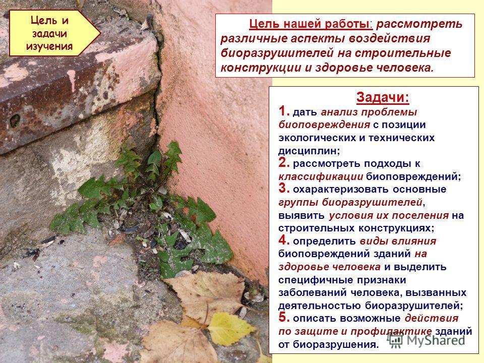 Презентация на тему Некоторые аспекты проблемы биоповреждений  4 Цель