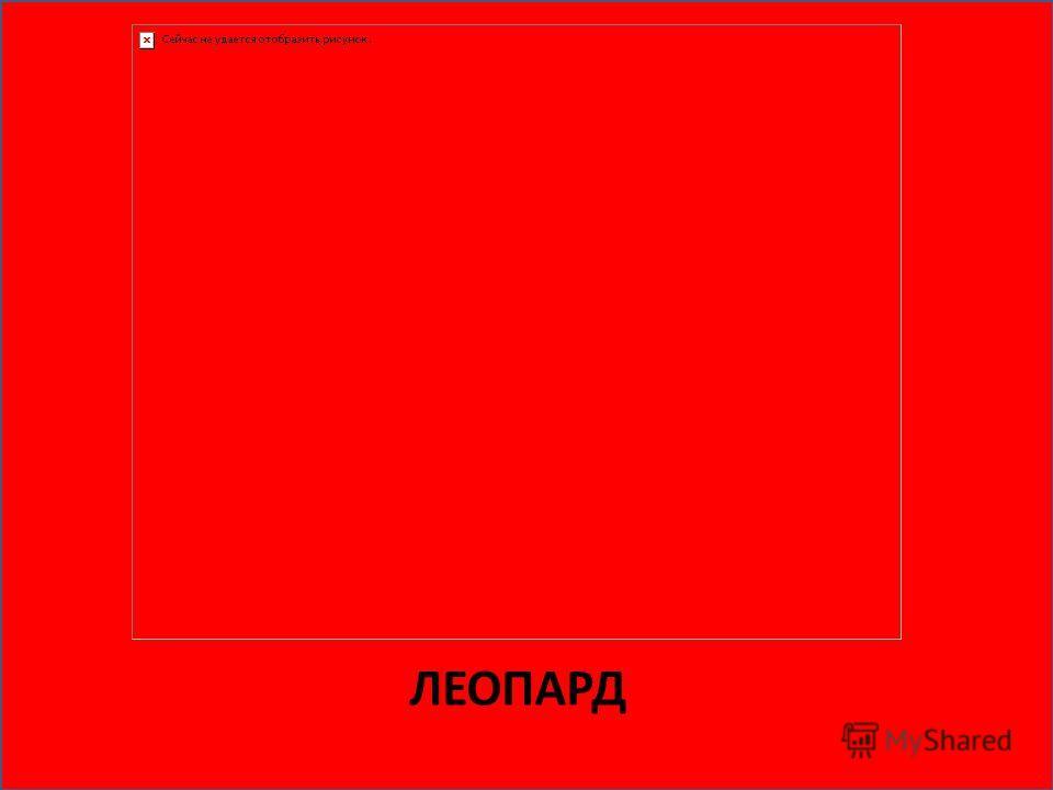 Животные красной книги россии 120 видов