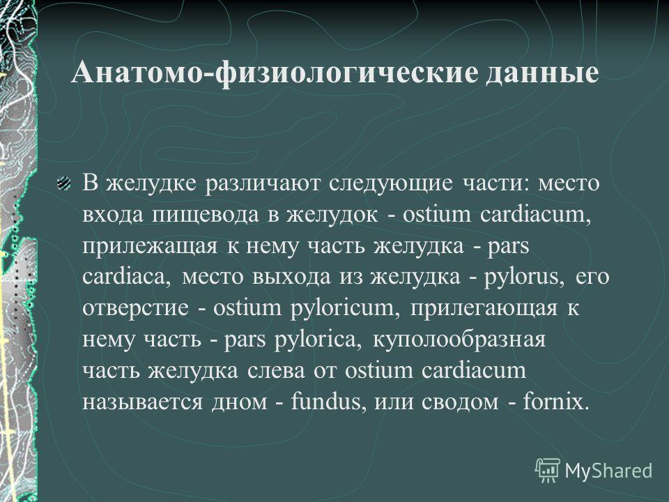 Анатомо-физиологические данные В желудке различают следующие части: место входа пищевода в желудок - ostium cardiacum, прилежащая к нему часть желудка - pars cardiaca, место выхода из желудка - pylorus, его отверстие - ostium pyloricum, прилегающая к