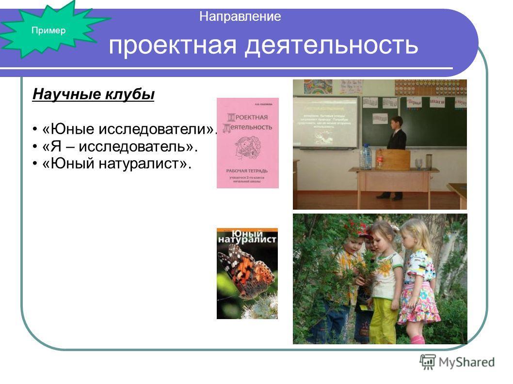 проектная деятельность Научные клубы «Юные исследователи». «Я – исследователь». «Юный натуралист». Направление Пример