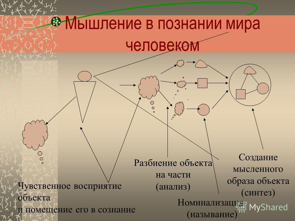 Мышление в познании мира человеком Чувственное восприятие объекта и помещение его в сознание Разбиение объекта на части (анализ) Создание мысленного образа объекта (синтез) Номинализация (называние)