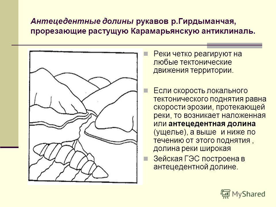 Антецедентные долины рукавов р.Гирдыманчая, прорезающие растущую Карамарьянскую антиклиналь. Реки четко реагируют на любые тектонические движения территории. Если скорость локального тектонического поднятия равна скорости эрозии, протекающей реки, то