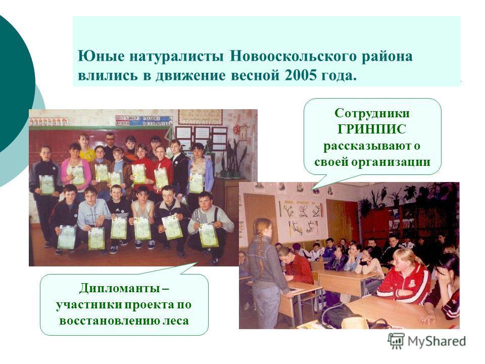 Юные натуралисты Новооскольского района влились в движение весной 2005 года. Сотрудники ГРИНПИС рассказывают о своей организации Дипломанты – участники проекта по восстановлению леса