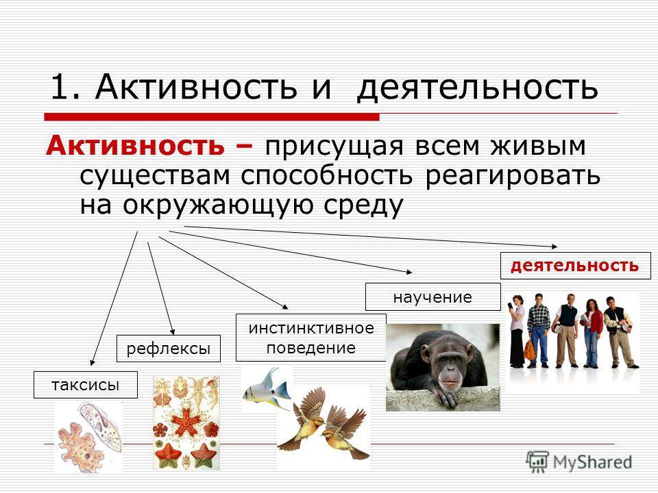 1. Активность и деятельность Активность – присущая всем живым существам способность реагировать на окружающую среду рефлексы инстинктивное поведение научение деятельность таксисы