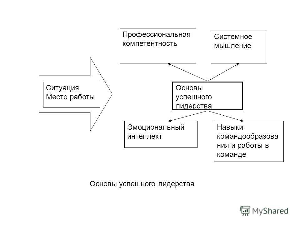 Ситуация Место работы Профессиональная компетентность Системное мышление Эмоциональный интеллект Навыки командообразова ния и работы в команде Основы успешного лидерства
