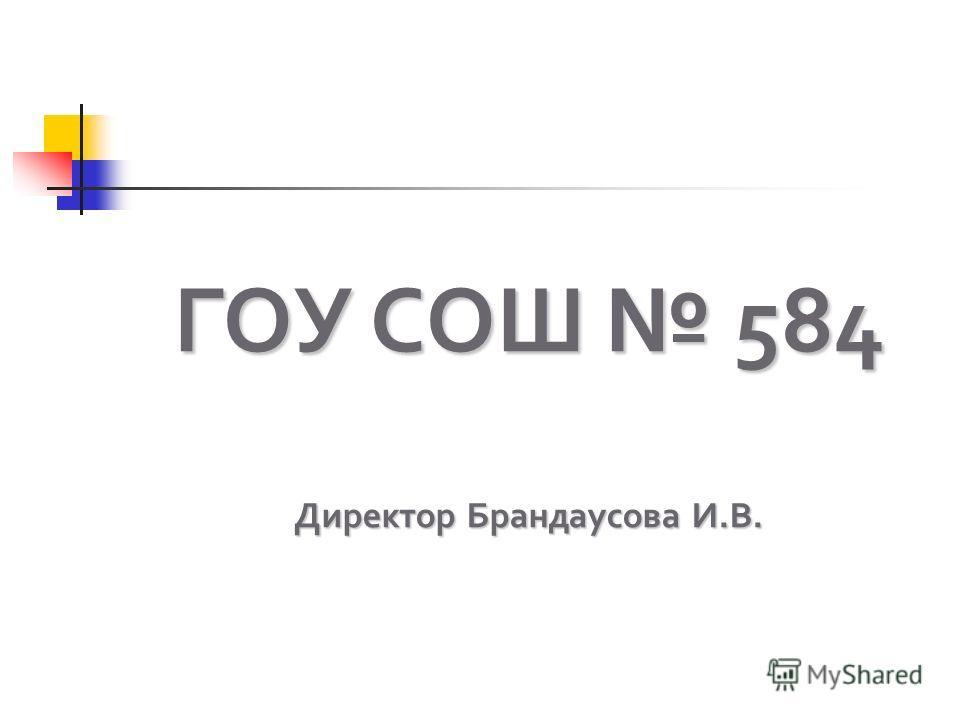 ГОУ СОШ 584 Директор Брандаусова И.В.