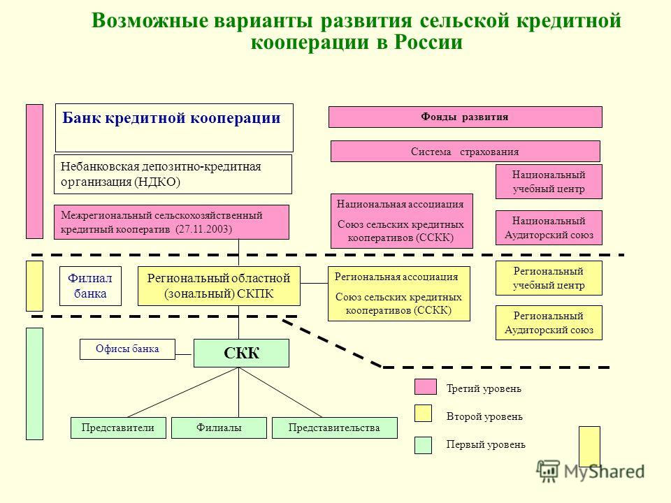 Возможные варианты развития сельской кредитной кооперации в России Национальная ассоциация Союз сельских кредитных кооперативов (ССКК) Национальный учебный центр Национальный Аудиторский союз Фонды развития Региональный областной (зональный) СКПК Фил