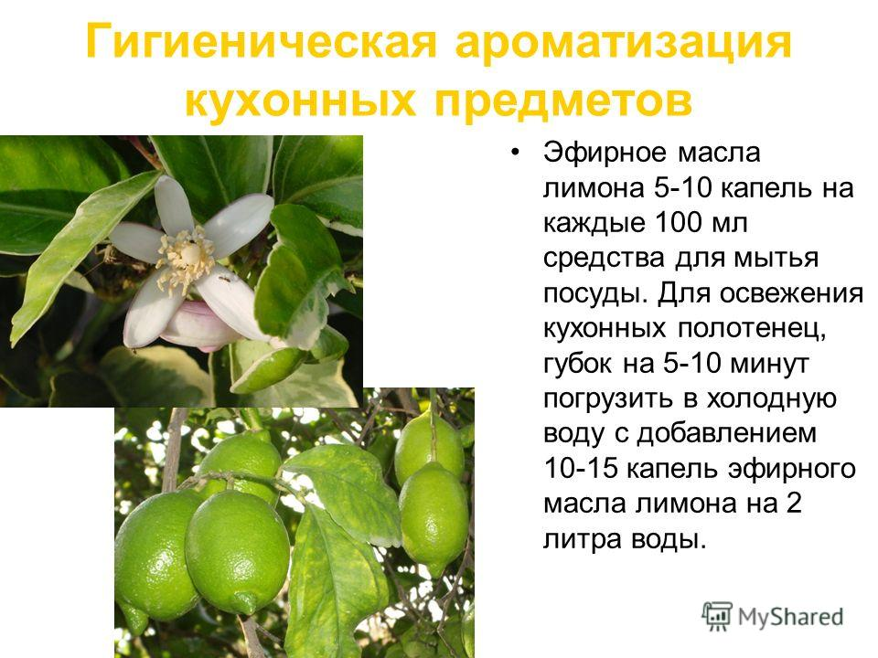 Гигиеническая ароматизация кухонных предметов Эфирное масла лимона 5-10 капель на каждые 100 мл средства для мытья посуды. Для освежения кухонных полотенец, губок на 5-10 минут погрузить в холодную воду с добавлением 10-15 капель эфирного масла лимон