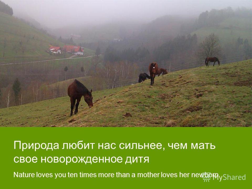Природа любит нас сильнее, чем мать свое новорожденное дитя Nature loves you ten times more than a mother loves her newborn