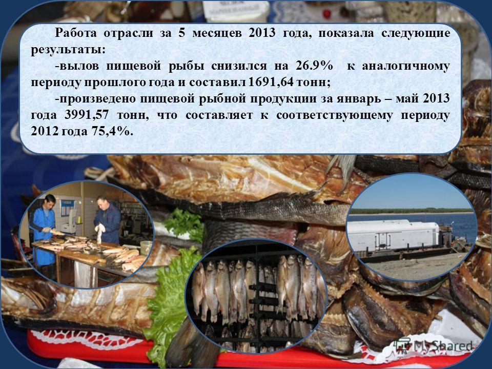 Работа отрасли за 5 месяцев 2013 года, показала следующие результаты: -вылов пищевой рыбы снизился на 26.9% к аналогичному периоду прошлого года и составил 1691,64 тонн; -произведено пищевой рыбной продукции за январь – май 2013 года 3991,57 тонн, чт