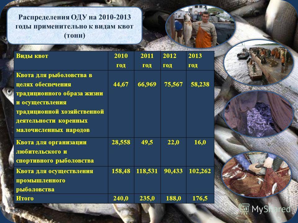 Виды квот 2010 год 2011 год 2012 год 2013 год Квота для рыболовства в целях обеспечения традиционного образа жизни и осуществления традиционной хозяйственной деятельности коренных малочисленных народов 44,6766,96975,56758,238 Квота для организации лю