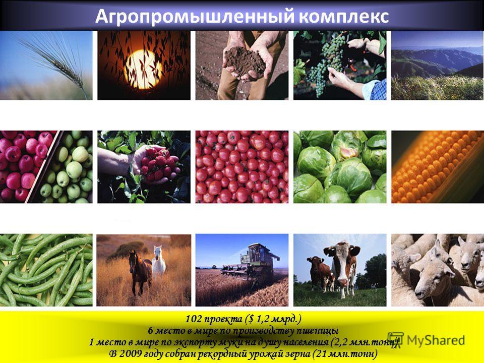 Агропромышленный комплекс 102 проекта ($ 1,2 млрд.) 6 место в мире по производству пшеницы 1 место в мире по экспорту муки на душу населения (2,2 млн.тонн) В 2009 году собран рекордный урожай зерна (21 млн.тонн)