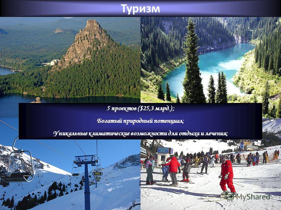 Туризм 5 проектов ($25,3 млрд.) ; Богатый природный потенциал; Уникальные климатические возможности для отдыха и лечения;