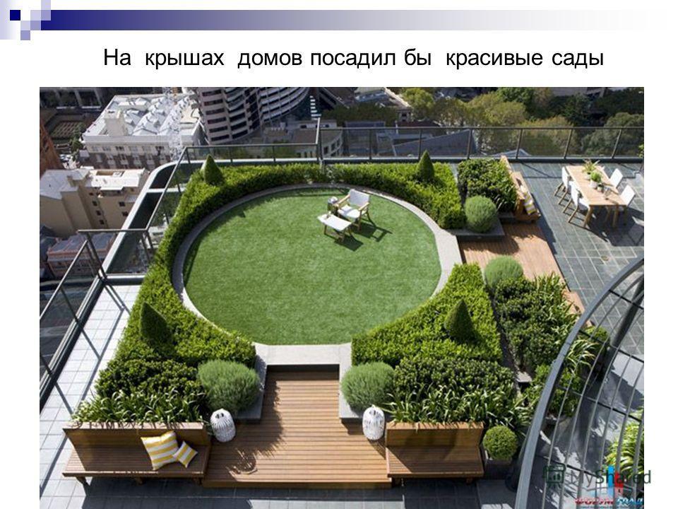 На крышах домов посадил бы красивые сады