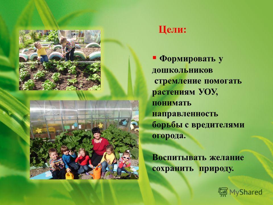 Формировать у дошкольников стремление помогать растениям УОУ, понимать направленность борьбы с вредителями огорода. Воспитывать желание сохранить природу. Цели: