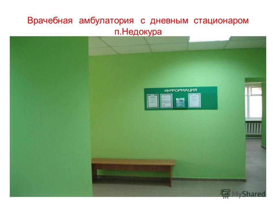 Врачебная амбулатория с дневным стационаром п.Недокура