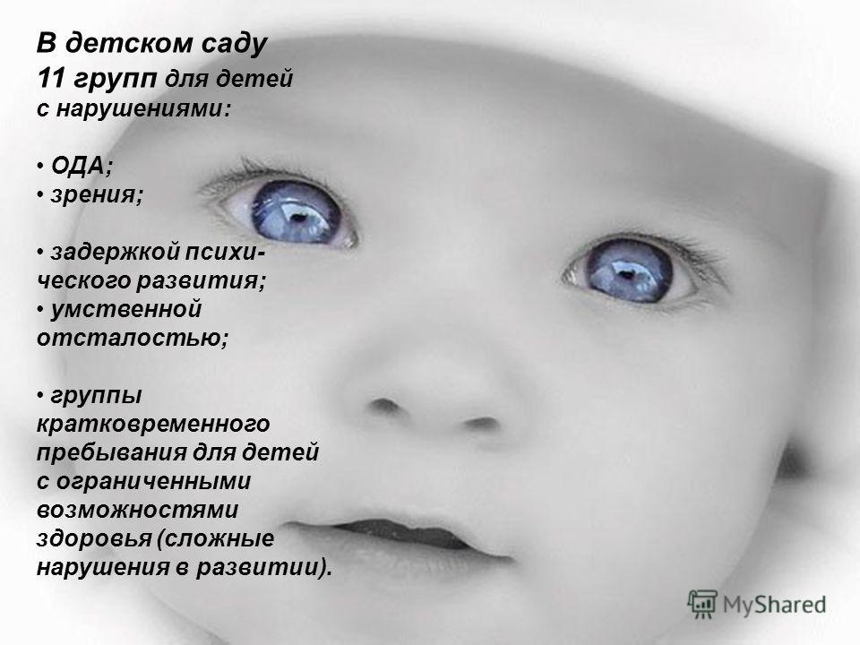 Условия реализации проекта: детский сад компенсирующего вида (11 групп)