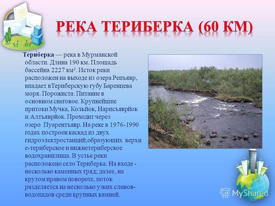 Тери́берка река в Мурманской области. Длина 190 км. Площадь бассейна 2227 км². Исток реки расположен на выходе из озера Репъявр, впадает вТериберскую губу Баренцева моря. Порожиста. Питание в основном снеговое. Крупнейшие притоки Мучка, Кольйок, Нари