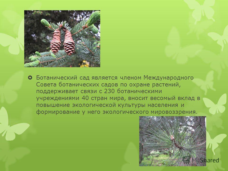 Ботанический сад является членом Международного Совета ботанических садов по охране растений, поддерживает связи с 230 ботаническими учреждениями 40 стран мира, вносит весомый вклад в повышение экологической культуры населения и формирование у него э