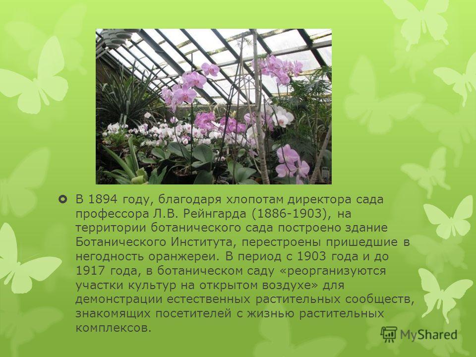 В 1894 году, благодаря хлопотам директора сада профессора Л.В. Рейнгарда (1886-1903), на территории ботанического сада построено здание Ботанического Института, перестроены пришедшие в негодность оранжереи. В период с 1903 года и до 1917 года, в бота