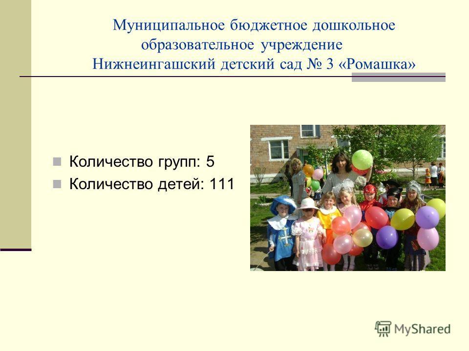 Муниципальное бюджетное дошкольное образовательное учреждение Нижнеингашский детский сад 3 «Ромашка» Количество групп: 5 Количество детей: 111
