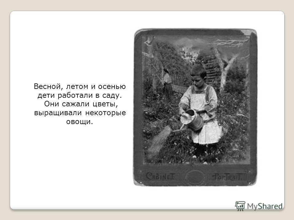 Весной, летом и осенью дети работали в саду. Они сажали цветы, выращивали некоторые овощи.