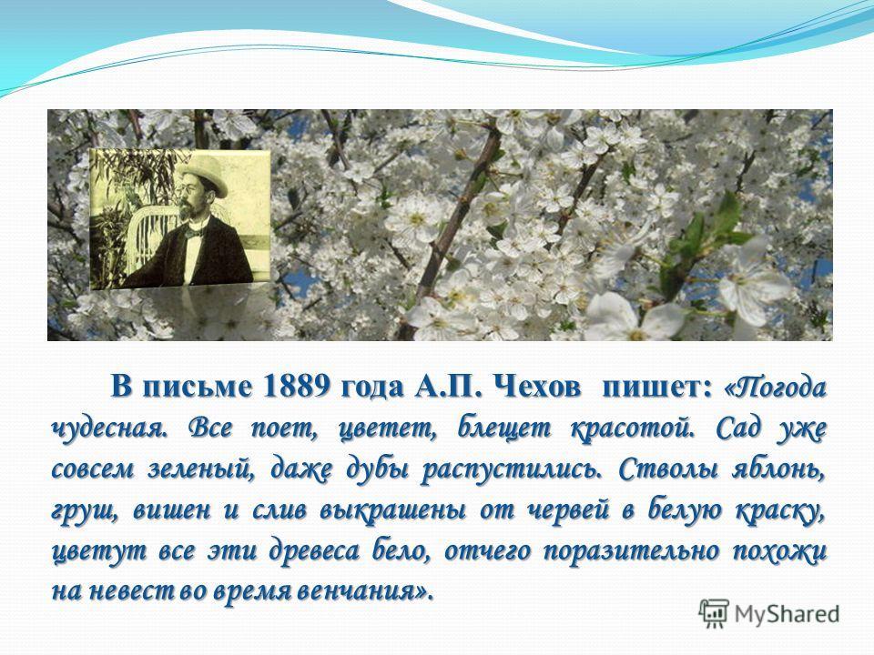 В письме 1889 года А.П. Чехов пишет: «Погода чудесная. Все поет, цветет, блещет красотой. Сад уже совсем зеленый, даже дубы распустились. Стволы яблонь, груш, вишен и слив выкрашены от червей в белую краску, цветут все эти древеса бело, отчего порази