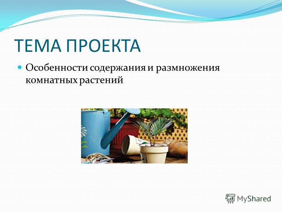 ТЕМА ПРОЕКТА Особенности содержания и размножения комнатных растений