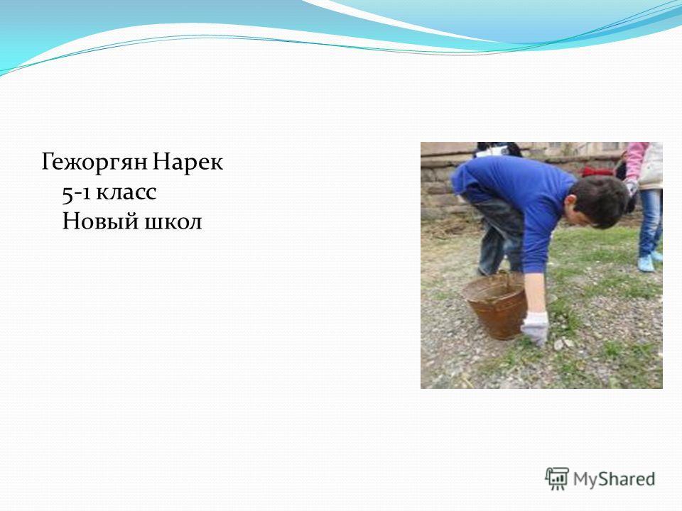 Гежоргян Нарек 5-1 класс Новый школ