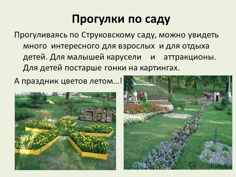 Прогулки по саду Прогуливаясь по Струковскому саду, можно увидеть много интересного для взрослых и для отдыха детей. Для малышей карусели и аттракционы. Для детей постарше гонки на картингах. А праздник цветов летом…!