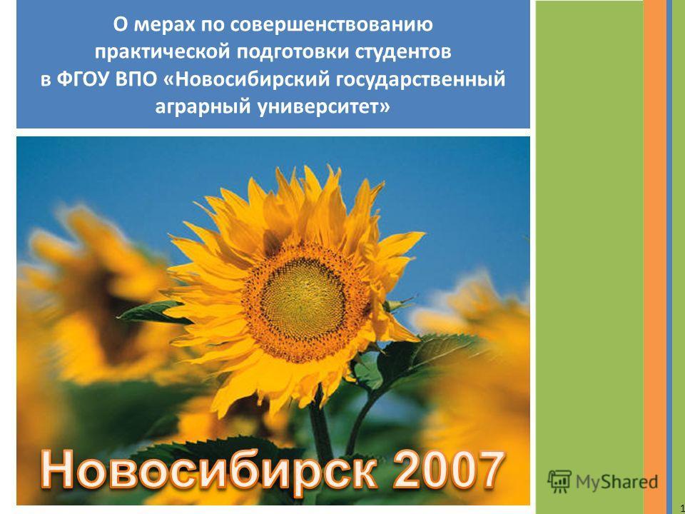 О мерах по совершенствованию практической подготовки студентов в ФГОУ ВПО «Новосибирский государственный аграрный университет» 1