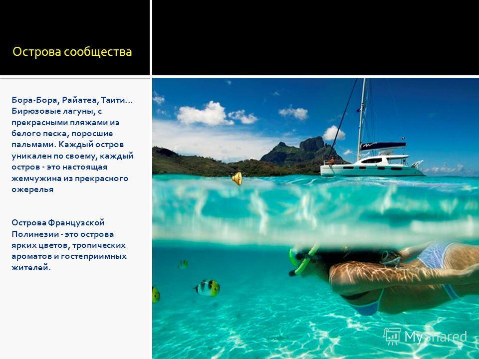 Острова сообщества Бора-Бора, Райатеа, Таити... Бирюзовые лагуны, с прекрасными пляжами из белого песка, поросшие пальмами. Каждый остров уникален по своему, каждый остров - это настоящая жемчужина из прекрасного ожерелья Острова Французской Полинези