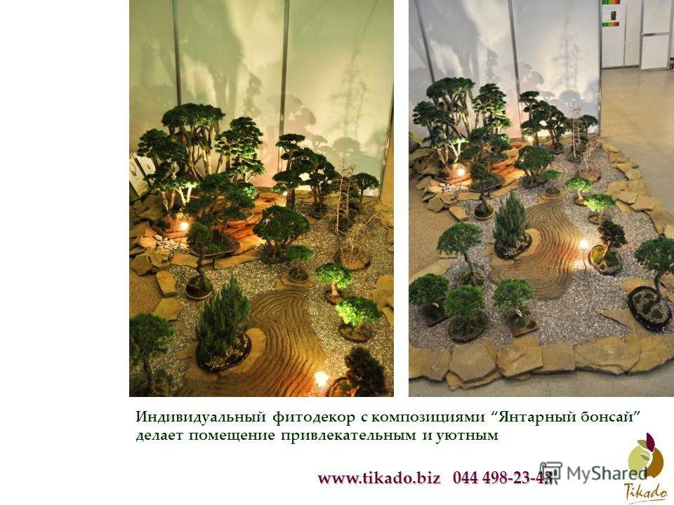 www.tikado.biz 044 498-23-43 Индивидуальный фитодекор с композициями Янтарный бонсай делает помещение привлекательным и уютным