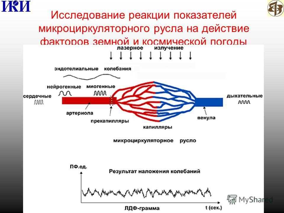 Исследование реакции показателей микроциркуляторного русла на действие факторов земной и космической погоды