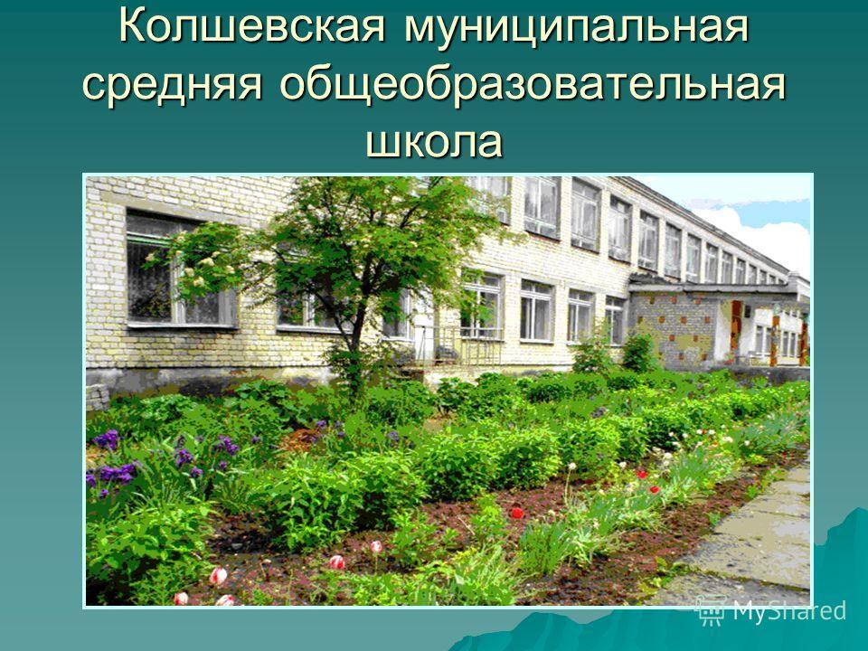 Колшевская муниципальная средняя общеобразовательная школа