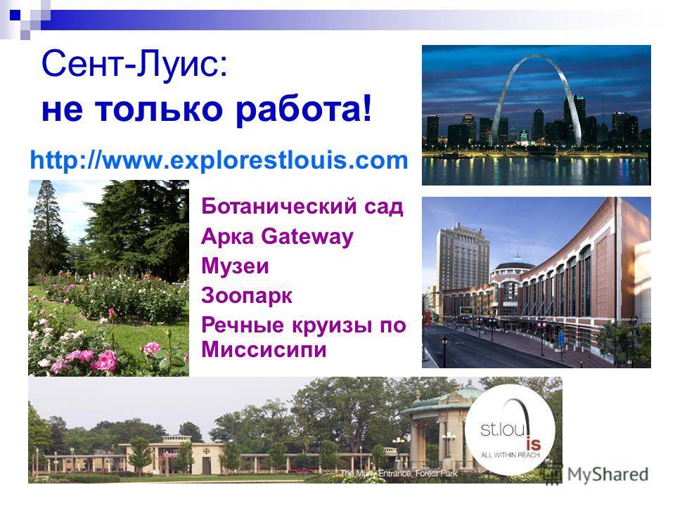 Сент-Луис: не только работа! http://www.explorestlouis.com Ботанический сад Арка Gateway Музеи Зоопарк Речные круизы по Миссисипи