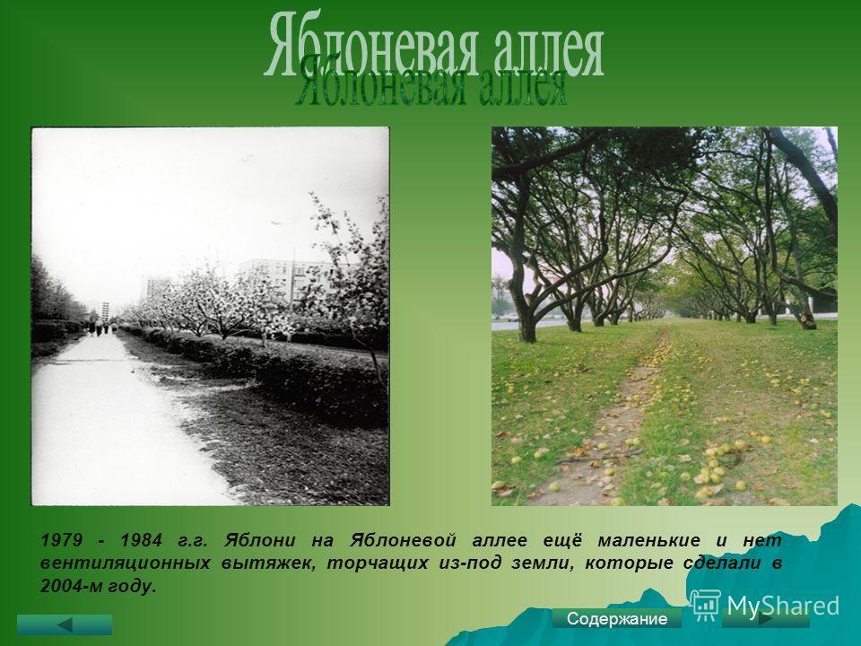 1979 - 1984 г.г. Яблони на Яблоневой аллее ещё маленькие и нет вентиляционных вытяжек, торчащих из-под земли, которые сделали в 2004-м году. Содержание