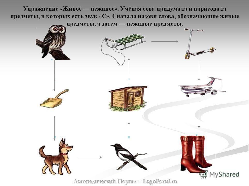 Упражнение « Живое неживое ». Учёная сова придумала и нарисовала предметы, в которых есть звук « С ». Сначала назови слова, обозначающие живые предметы, а затем неживые предметы. Логопедический Портал – LogoPortal.ru