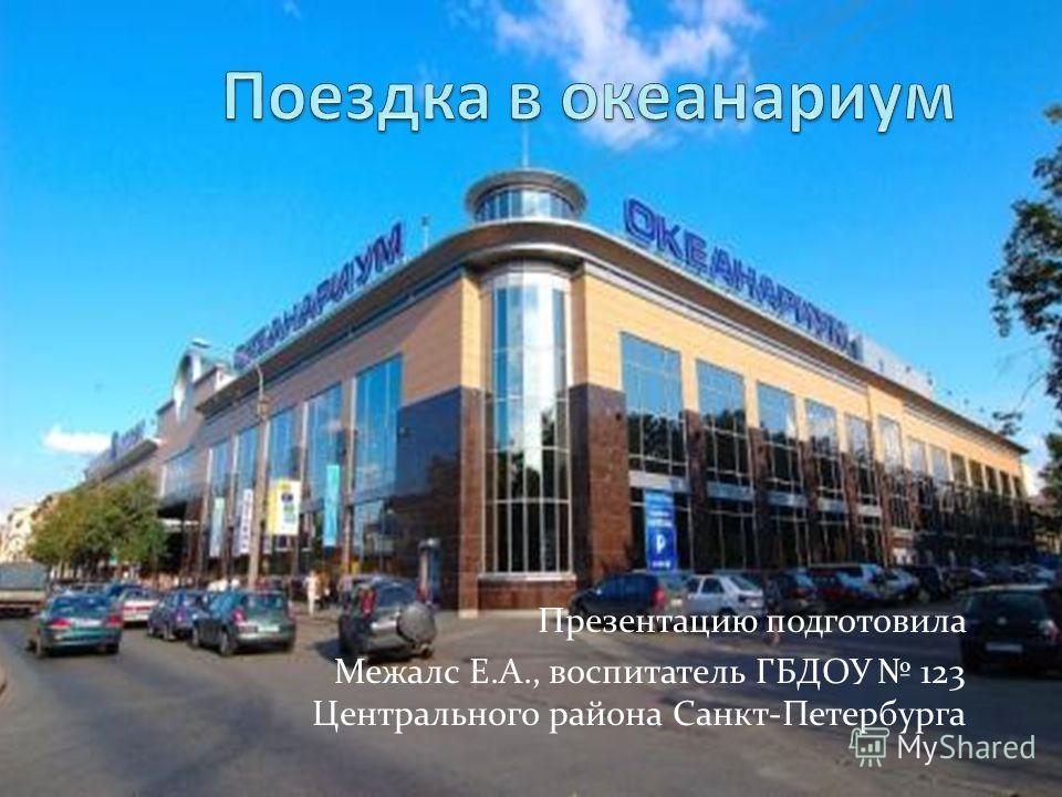 Презентацию подготовила Межалс Е.А., воспитатель ГБДОУ 123 Центрального района Санкт-Петербурга