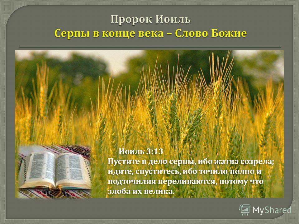 Иоиль 3:13 Пустите в дело серпы, ибо жатва созрела ; идите, спуститесь, ибо точило полно и подточилия переливаются, потому что злоба их велика. Иоиль 3:13 Пустите в дело серпы, ибо жатва созрела ; идите, спуститесь, ибо точило полно и подточилия пере
