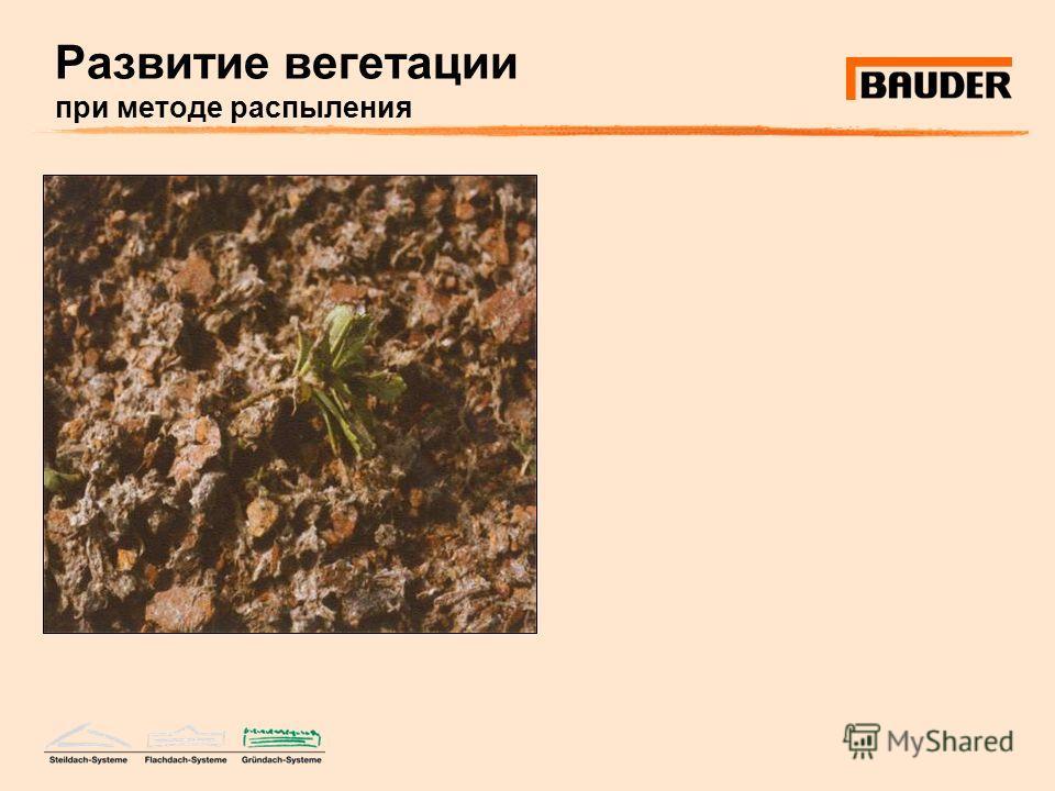Развитие вегетации при методе распыления