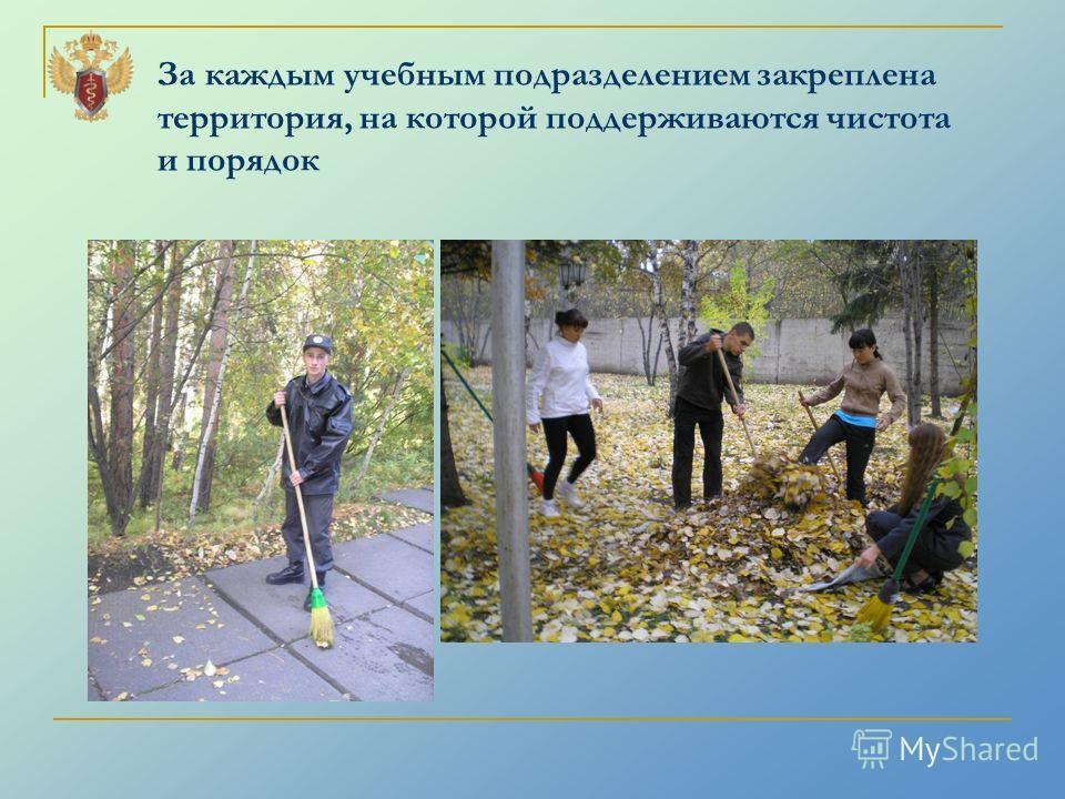 За каждым учебным подразделением закреплена территория, на которой поддерживаются чистота и порядок