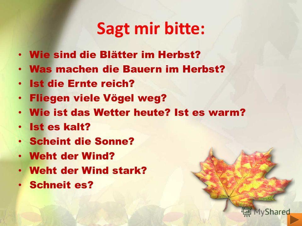 Sagt mir bitte: Wie sind die Blätter im Herbst? Was machen die Bauern im Herbst? Ist die Ernte reich? Fliegen viele Vögel weg? Wie ist das Wetter heute? Ist es warm? Ist es kalt? Scheint die Sonne? Weht der Wind? Weht der Wind stark? Schneit es?