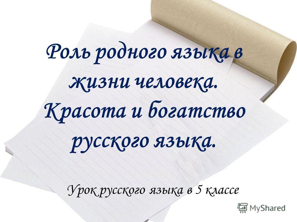 Роль родного языка в жизни человека. Красота и богатство русского языка. Урок русского языка в 5 классе
